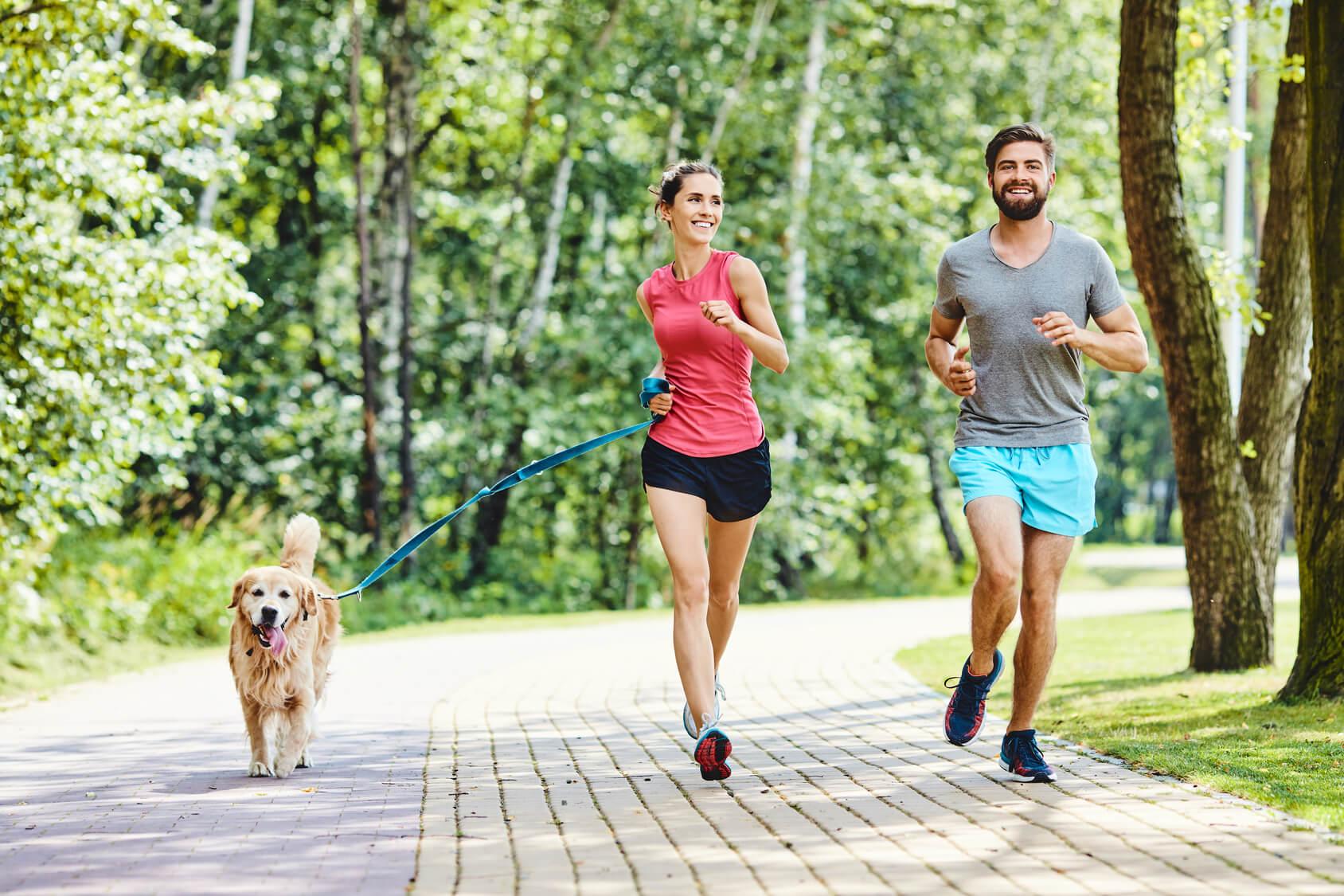 Slow Jogging Bieganie Dla Kazdego Synergiczni