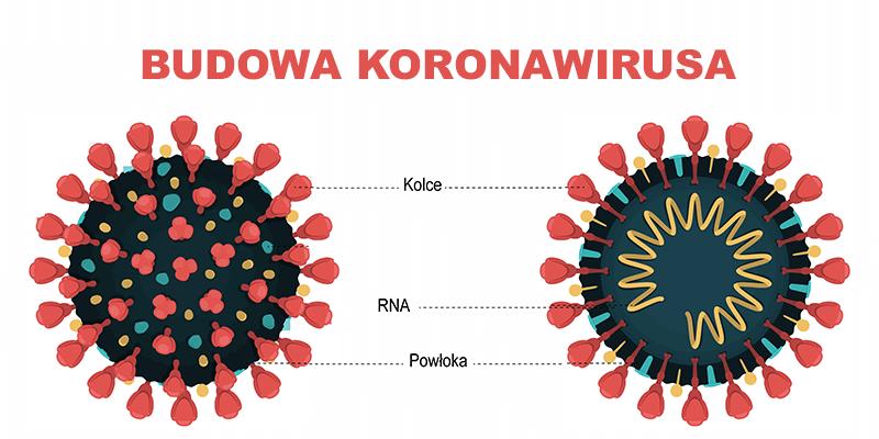 Koronawirus Oczami Dziecka